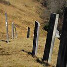 cemetery row by Jeff Stroud