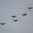 Spitfire Formation by Nigel Bangert
