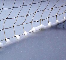 frozen fence by Christine Ford