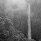 Japan Waterfall Landscape 02 - BW by Elvis Diéguez