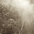 Japan Waterfall Landscape 03 - Sepia by Elvis Diéguez