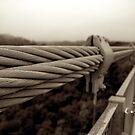 Japan Bridge 01 - BW by Elvis Diéguez