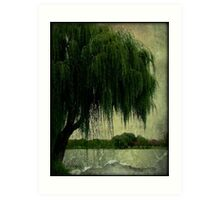 My special weeping willow tree © Art Print
