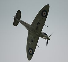 Spitfire Dive by Nigel Bangert