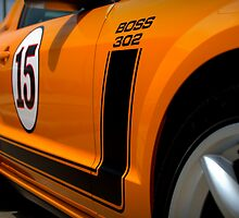 2007 Orange Ford Mustang Saleen Boss 302 by Brian Harig