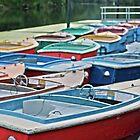 Boat Rentals by Dan72