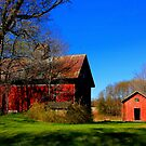 """"""" A Red Barn ,with Green Grass and Blue Sky """" by canonman99"""
