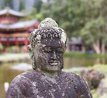 Temple Valley Buddha by Darakian