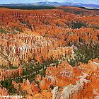 Canyon formations by Erykah36