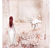 The Enchanted Forest Photographic Print