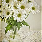Simply Daisies by Barb Leopold
