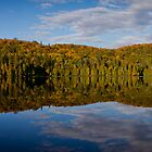 Loon Lake Panorama by CormacEby