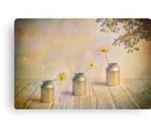 Three daisies Canvas Print