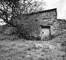 Uther's Shed BW by Andy Freer