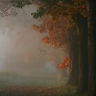 Beginning of fall by JanaBehr