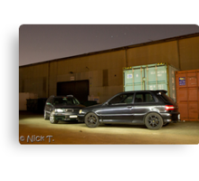 Stagea and Starlet Canvas Print