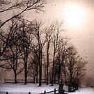 Lake effect snow by iamwiley