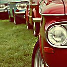 In retrospective...2--- Tipperary Vintage Rally by Gregoria  Gregoriou Crowe