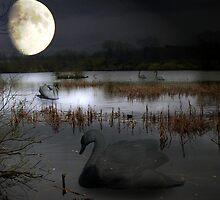 Ghost Lake by Carol Bleasdale