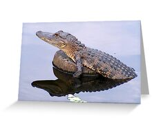 The Gator is BACK!! Greeting Card