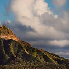 Diamond Head At Sunset by Alex Preiss