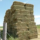 The haybale stack by Aurora