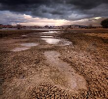 Following Storm by Bob Larson