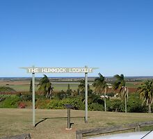 'The Hummock Lookout!' Bundaberg, Queensland. by Rita Blom
