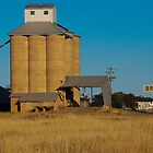 Brushwood Grain Silos by Tim Pruyn