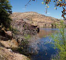 Pena Blanca Lake by Lucinda Walter