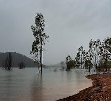 Lake Eildon, Victoria by DavidsArt