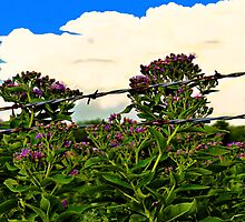 Flowers And Storms by Vince Scaglione