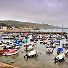 Outrageous Lyme Regis by bevanimage