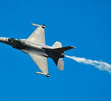 F-16C Falcon, 143 Squadron, Republic of Singapore Air Force by Tim Pruyn
