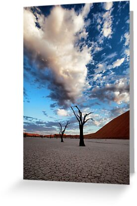 Clouds over Dead Vlei by Jill Fisher