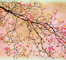 Dogwood Canvas by Jessica Jenney