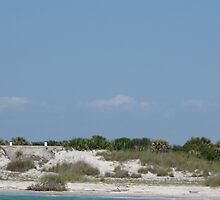 Egmont Key Lighthouse, FL, USA by TedT