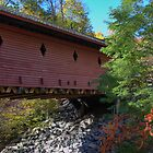 NYS Covered Bridge by paulsk