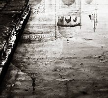 Taj Reflection © by Ethna Gillespie