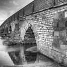 Great Barford Bridge by Stacey  Purkiss