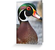 """Ha, Take that peacock!"" Greeting Card"