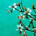 moody florets by Iris Lehnhardt