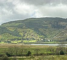Views From Dodd Wood by Jamie  Green