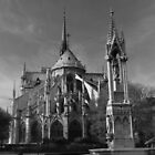 Notre Dame from Square St Jean XXIII by Potz