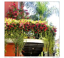 Flowering Balcony by Sandra Russell