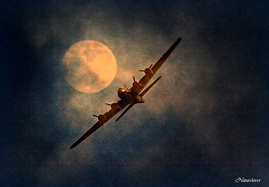 A Night Flight by naturelover