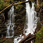 Ranger Falls in Spring - Mt. Rainier N. P. by Mark Heller