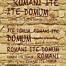 ROMANI ITE DOMUM #2 (iPhone version) by ikado