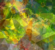 Abstract Polygons 11 by Christopher Johnson