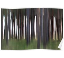 Forest Abstract 19 Poster